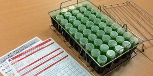 Lait de vache : Nouveau dispositif pour les analyses «cellules»